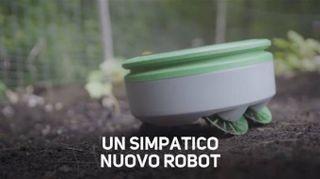 Taglia le erbacce e non si lamenta...è un robot!