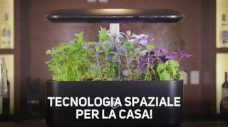 Una tecnologia spaziale per crescere il basilico!