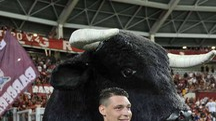 Torino: Mihajlovic, felice Belotti resti