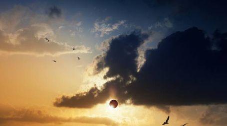 Negli USA, il 21 agosto si vedrà l'eclissi solare totale - Foto: iStock / Igor Zhuravlov