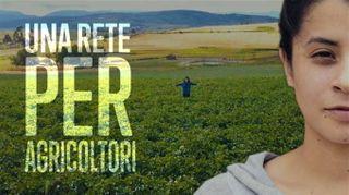 Dal produttore al consumatore: agricoltori in rete