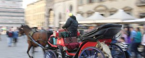 Carrozza a cavallo in una foto Germogli