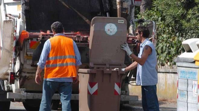 Raccolta di rifiuti (Foto Novi)
