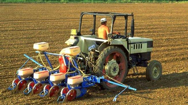 Un agricoltore al lavoro (Foto di repertorio Germogli)