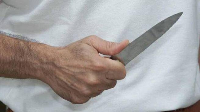 Un coltello (foto di repertorio Germogli)