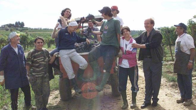 La vendemmia 2005 a Cerreto Guidi (Archivio Fotocronache Germogli)