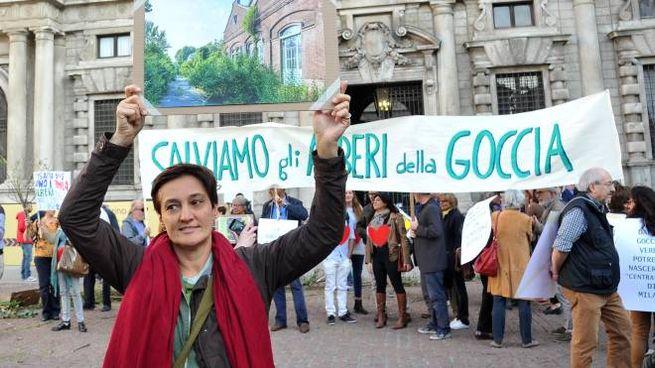 Protesta contro il taglio degli 'alberi della Goccia'