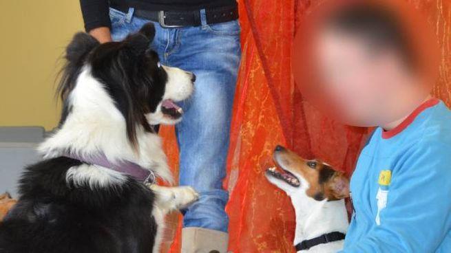 Una seduta di 'pet therapy'