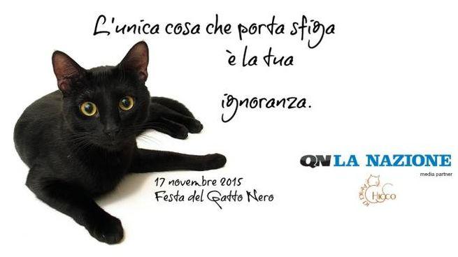 Il 17 Novembre è La Giornata Del Gatto Nero La Nazione E Amici Di