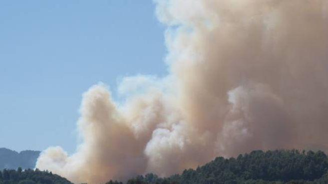 A fuoco il bosco