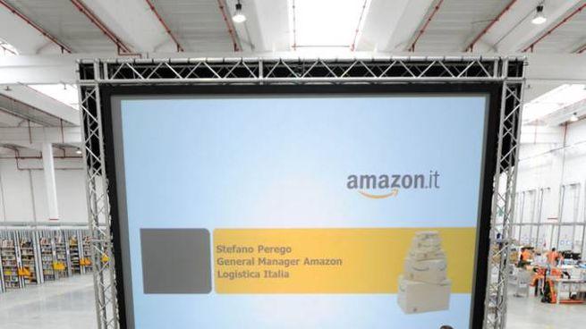Amazon (Ansa)