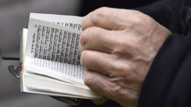 Ebrei ortodossi a Mantova: