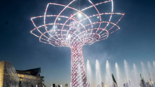 L'albero della vita di Expo 2015