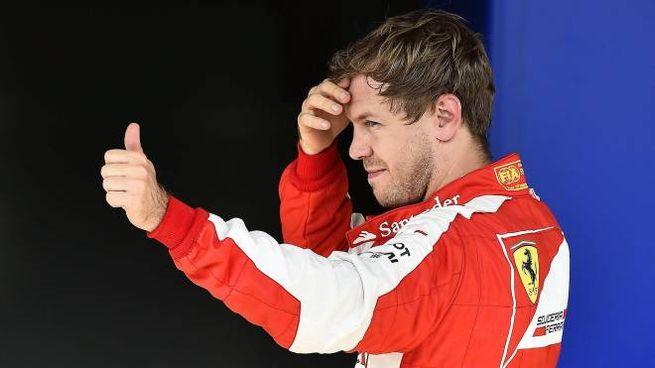 Sebastian Vettel (Alive)