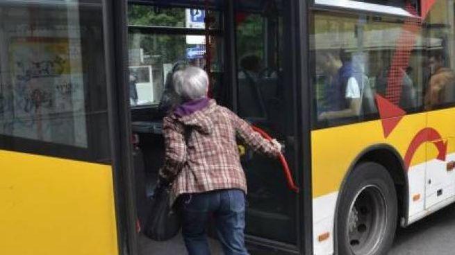 Bus Lam