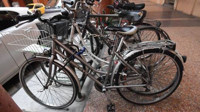 Biciclette in sosta