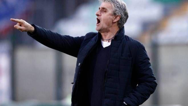 Guido Carboni, allenatore del Siena (Di Pietro)