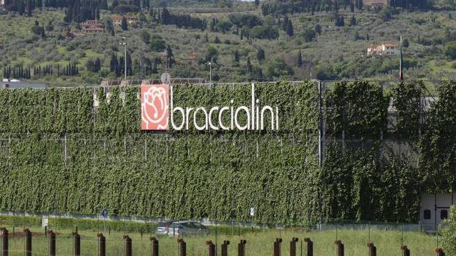 L'azienda Braccialini (foto Germogli)