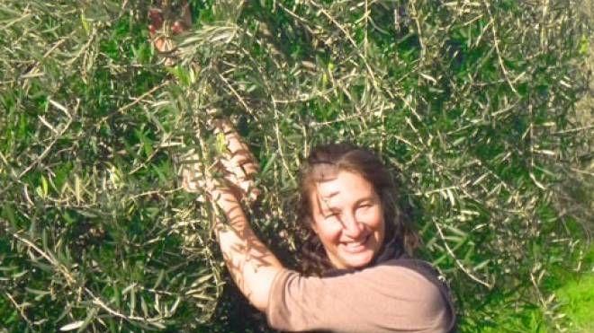 """Josiane Ferlan """"Antica Quercia Verde"""""""