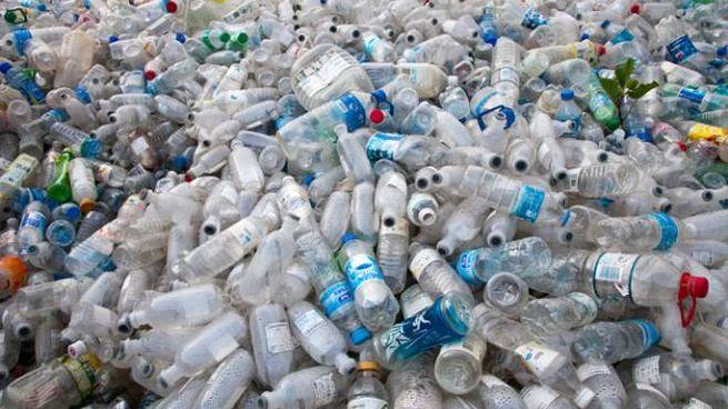 Ogni anno vengono prodotte 100 tonnellate di rifiuti di plastica (Foto: dbimages/Alamy)