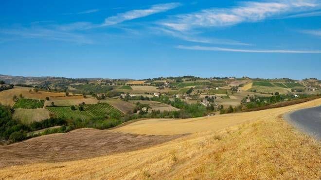 Le colline del modenese - Consorzio del Prosciutto di Modena