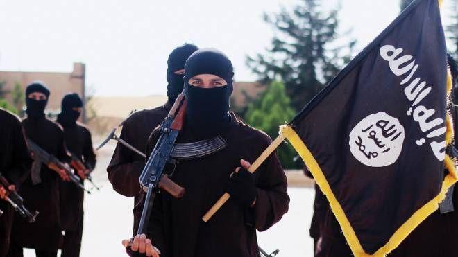 Isis (Olycom)