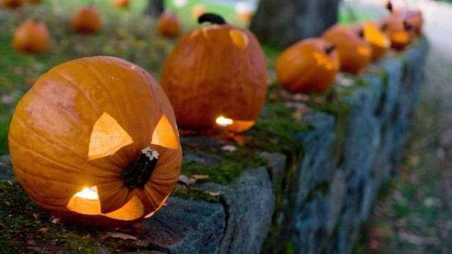 Perche La Zucca A Halloween.Halloween La Vera Storia Di Jack O Lantern E Di Dolcetto O