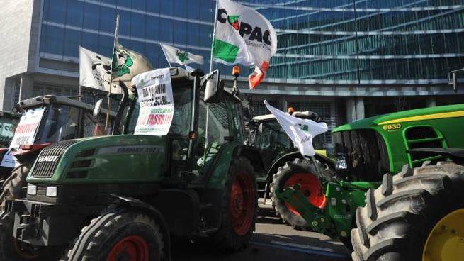 Allevatori in Regione contro le quote latte (Newpress)
