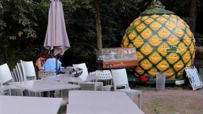 Il chiosco a forma di ananas al centro dello scandalo