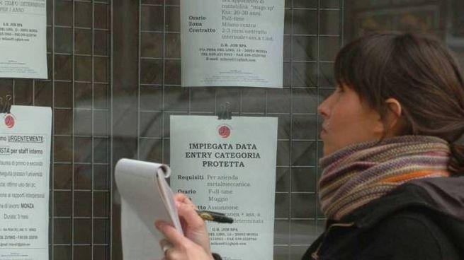 Una giovane in cerca di impiego