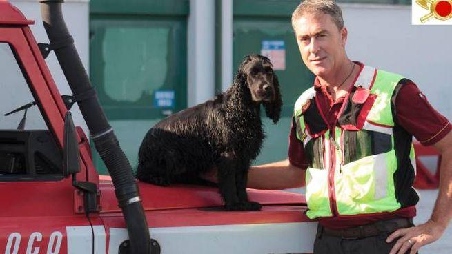 Vigile del fuoco con un cane dell'unità cinofila (foto di repertorio)