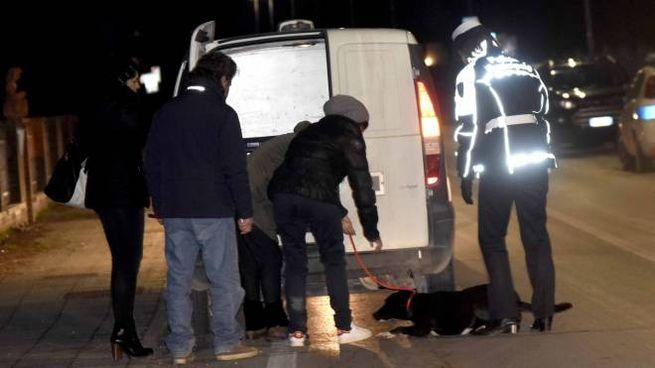 Il cane viene caricato a fatica sul furgone delle guardie veterinarie (Businesspress)