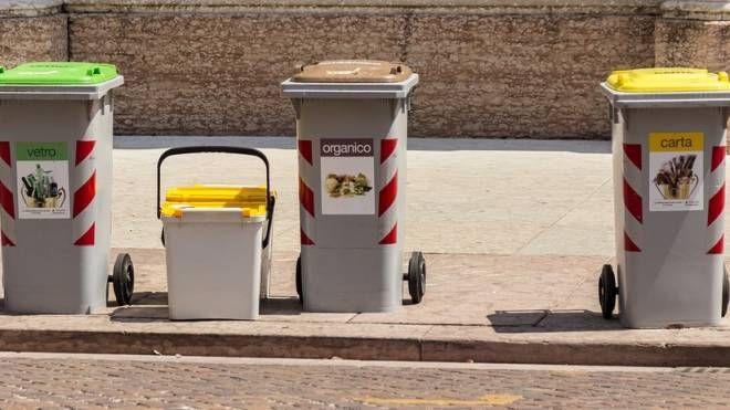 Furti tra vicini dei bidoni della spazzatura per umidi ed erba: in città c'è anche questo