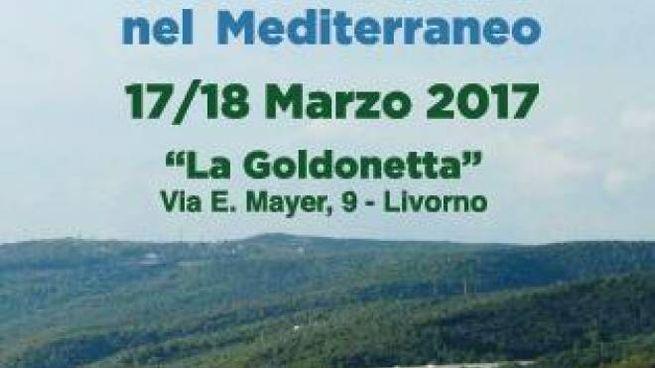 A Livorno torna Medì: confronto tra le città del Mediterraneo