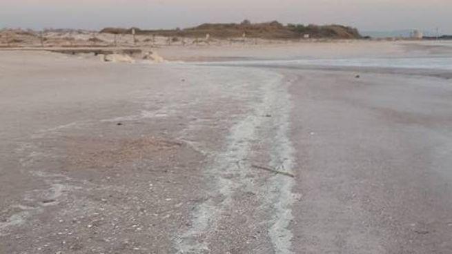 I depositi di polietilene rinvenuti in prossimità del Fosso Bianco