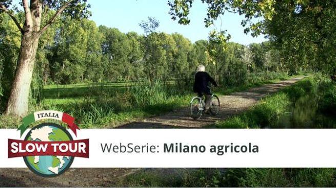 Milano Aricola