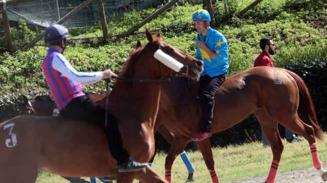 Le corse di primavera si correranno domenica 21 maggio Sono stati scelti i 79 cavalli partenti nella buca d'Andrea