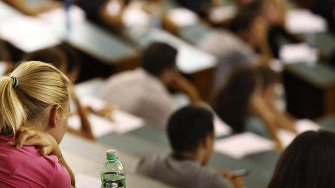 Studenti universitari (Ansa)