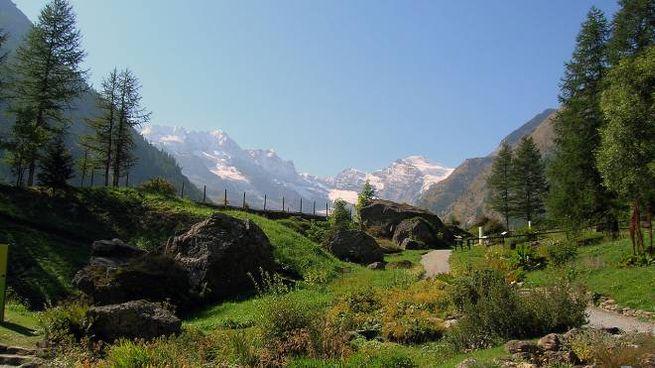Parco Nazionale del Gran Paradiso Foto @Wikipedia