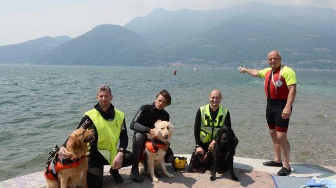 I cani eroi del salvataggio nautico (Sandonini)