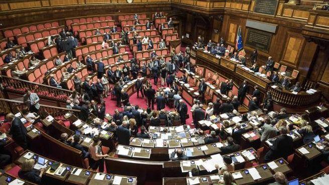 Voto finale su dl manovra correttiva in Senato (Lapresse)