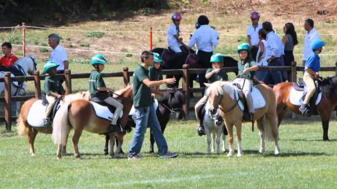 Ponyadi