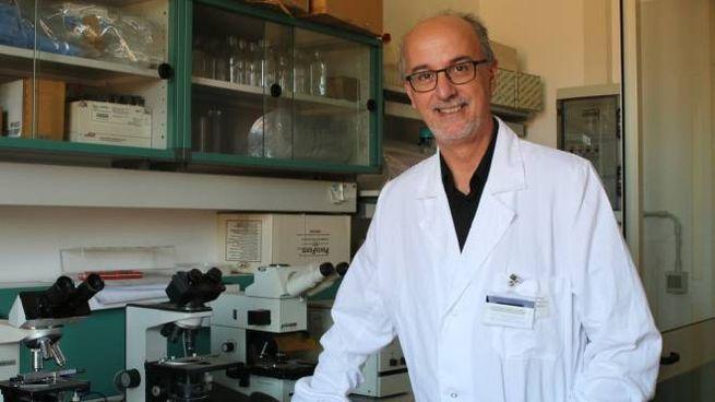 Il professor Pier Luigi Lopalco, epidemiologo dell'ateneo pisano (foto di Valtriani)