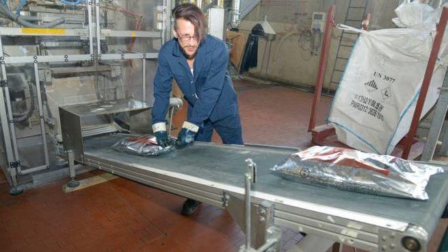 Aziende svizzere in cerca  di operai specializzati