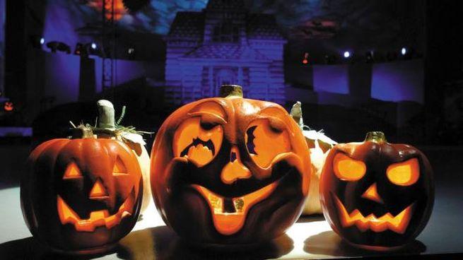 Zucche Di Halloween Terrificanti.Buongiorno Reggio Pronti Per Una Terrificante Notte Di Halloween