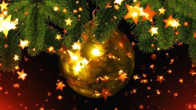 Luci in un albero di Natale