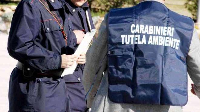 I carabinieri del Noe in azione (immagine di repertorio)