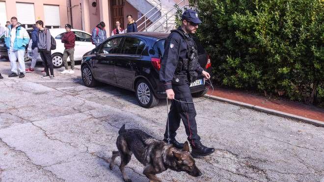 I carabinieri con i cani anti droga