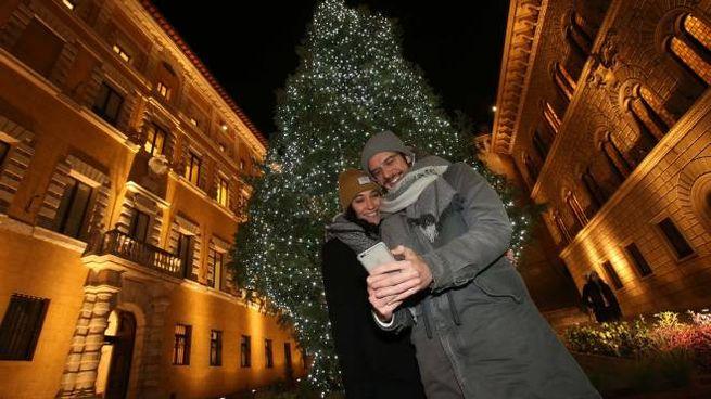 L'albero di Natale in piazza a Siena (Foto Dipietro)