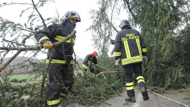 Intervento dei vigili del fuoco per il maltempo (foto repertorio)